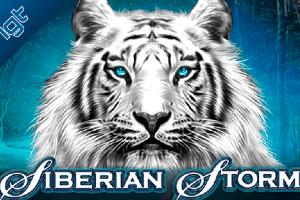Siberian Storm Logo.png