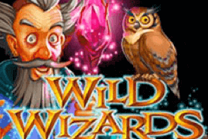 Wild Wizards Slot Game - Logo